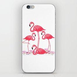 Flamingos 4 iPhone Skin