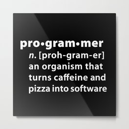 Programmer dictionary definition Metal Print