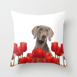 Weimaraner Dog with spring tulips flowers Throw Pillow