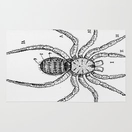 Vintage Spider Diagram Rug