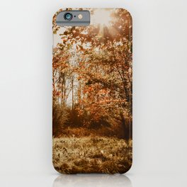 Autumn vibes | Fine Art Travel Photography iPhone Case