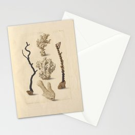 Naturalist Coral Stationery Cards