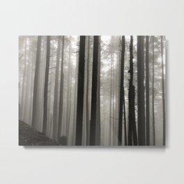 Trees 6 Metal Print