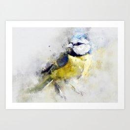 Waterolour blue tit bird painting illustration blue navy yellow artsy animal nature Art Print