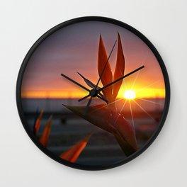 Bird of Paradise Sunburst by Aloha Kea Photography Wall Clock