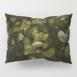 Maidenhair Vine Plant Printable Wall Art | Floral Flower Botanical Nature Outdoors Macro Photography Print Pillow Sham