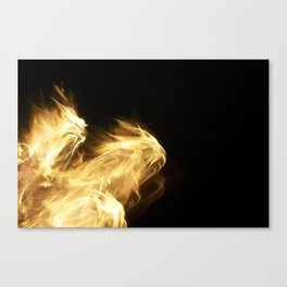 Fire1 Canvas Print