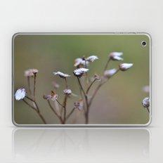 Grass Seeds Laptop & iPad Skin