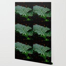 drop to nature Wallpaper