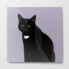 The Cat Sith (Cat Sidhe) Metal Print