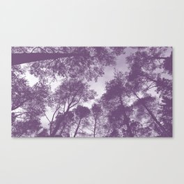Forest view - lilac Canvas Print