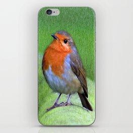 Robin iPhone Skin
