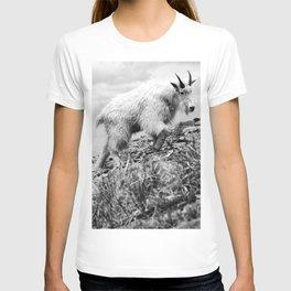 MOUNTAIN GOATS // 4 T-shirt