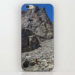Marmot Territory  iPhone Skin