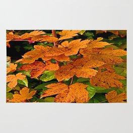 glowing autumn leafs Rug