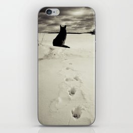 Winter landscape with dog  iPhone Skin