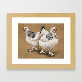 Brahma Hens Framed Art Print
