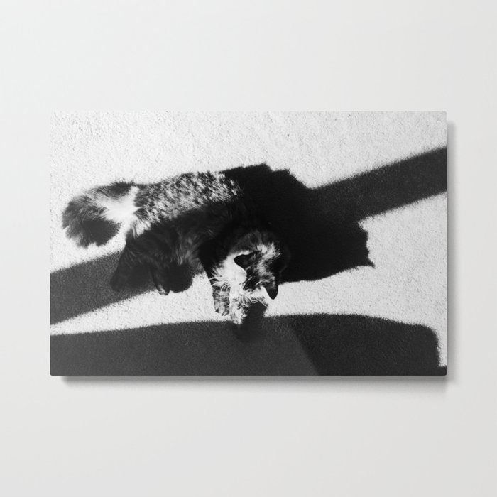 Aesthetic Black And White Cat Metal Print