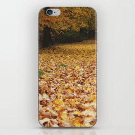 Autumn in Wooster part 2 iPhone Skin