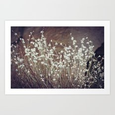 Rock Flowers Art Print