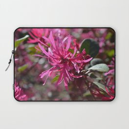 Pink Tenticles Laptop Sleeve