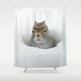 Cute Pop-up Squirrel in the Snow Shower Curtain