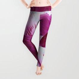 Enrapture - deep pink Leggings