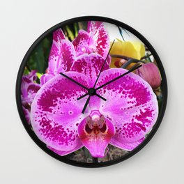 Phalaenopsis Wall Clock