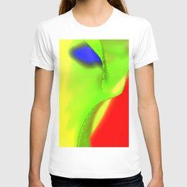 Landscape multicolor ign 541 T-shirt