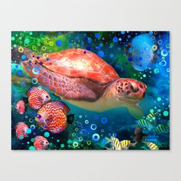Sea Turtle In Blue Water Canvas Print