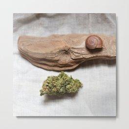 High-O-Rama Series: Snail Metal Print