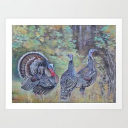 Wilde turkeys in the forest landscape Wildlife Birds pastel painting Art Print