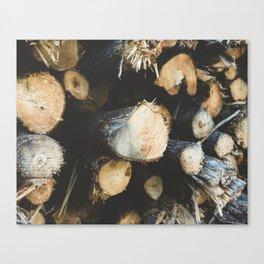 Woodpile Canvas Print