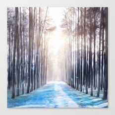 Feather Dance In Winter Canvas Print