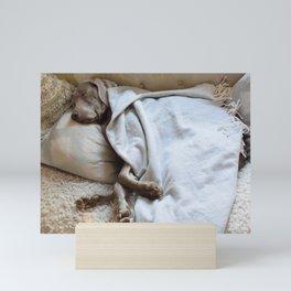 Sweet dog's dreams. Mini Art Print
