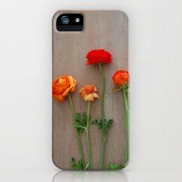 Orange Ranunculus flowers iPhone Case