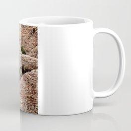 Red Rock Canyon, Nevada Coffee Mug