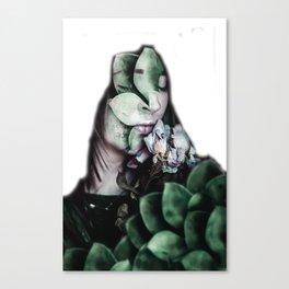sflsfsdfs Canvas Print