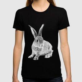 Rabbit 25 T-shirt