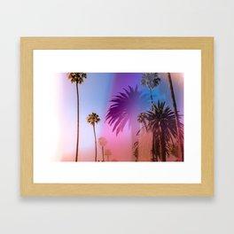 Sunshine and Palm Trees Framed Art Print