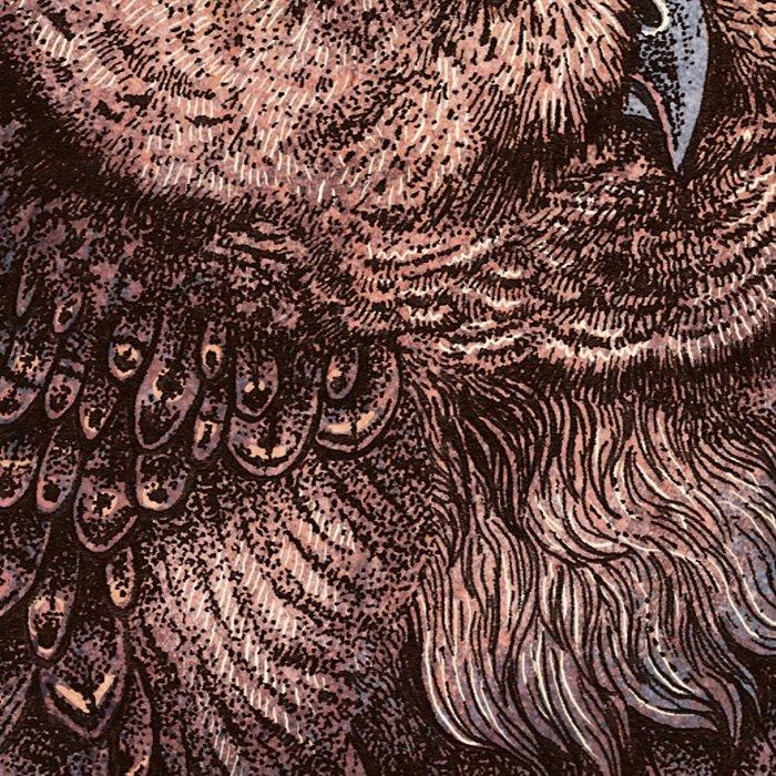 Tawny Owl Pink Leggings