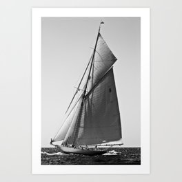 Sailrace in open sea - vintage vessel of one mast in Port Mahon water - pedro cardona Art Print