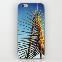 coachella iPhone & iPod Skins featuring Coachella by Wolf Feather