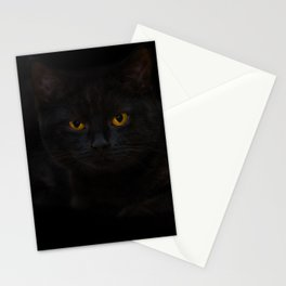 Black cat in a dark room Stationery Cards