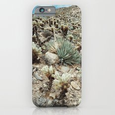 Mountain Cholla Slim Case iPhone 6