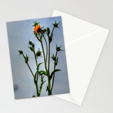 Compass Plant Stationery Cards