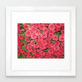 pic 006 Framed Art Print