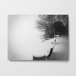 Winter 3 Metal Print