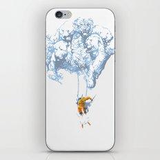 Avalanche iPhone & iPod Skin