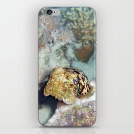 Baby Cuttlefish and Hard Coral iPhone Skin